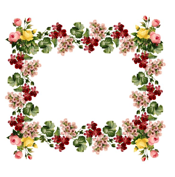 41+ Floral Border Clipart.
