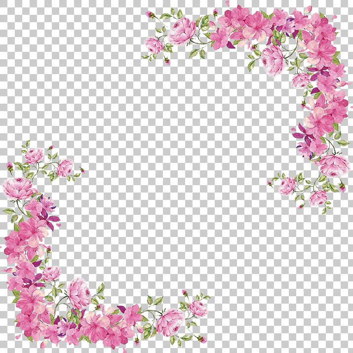 Flowers Border PNG Image Free Download searchpng.com.