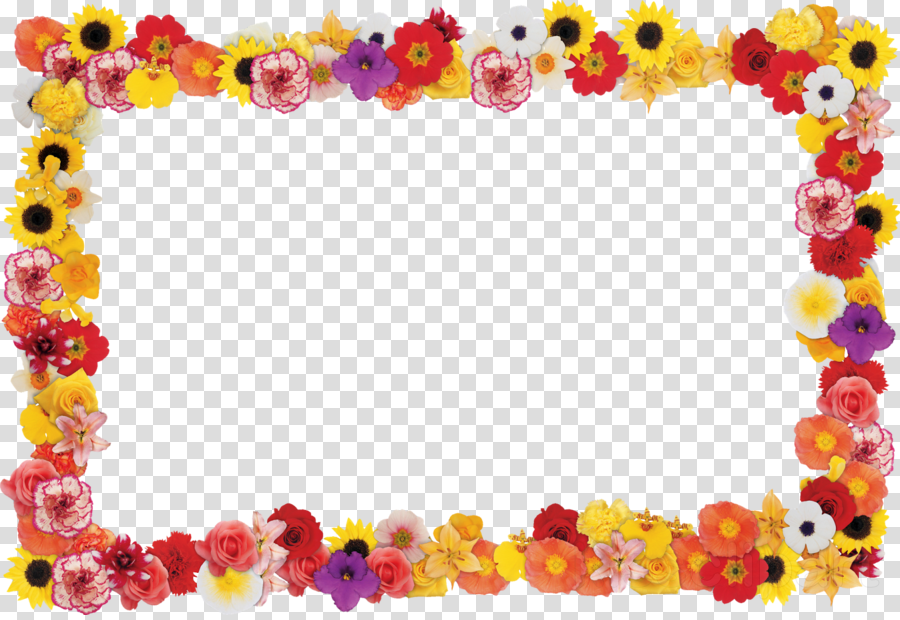 Flowers Border Png Hd Images.