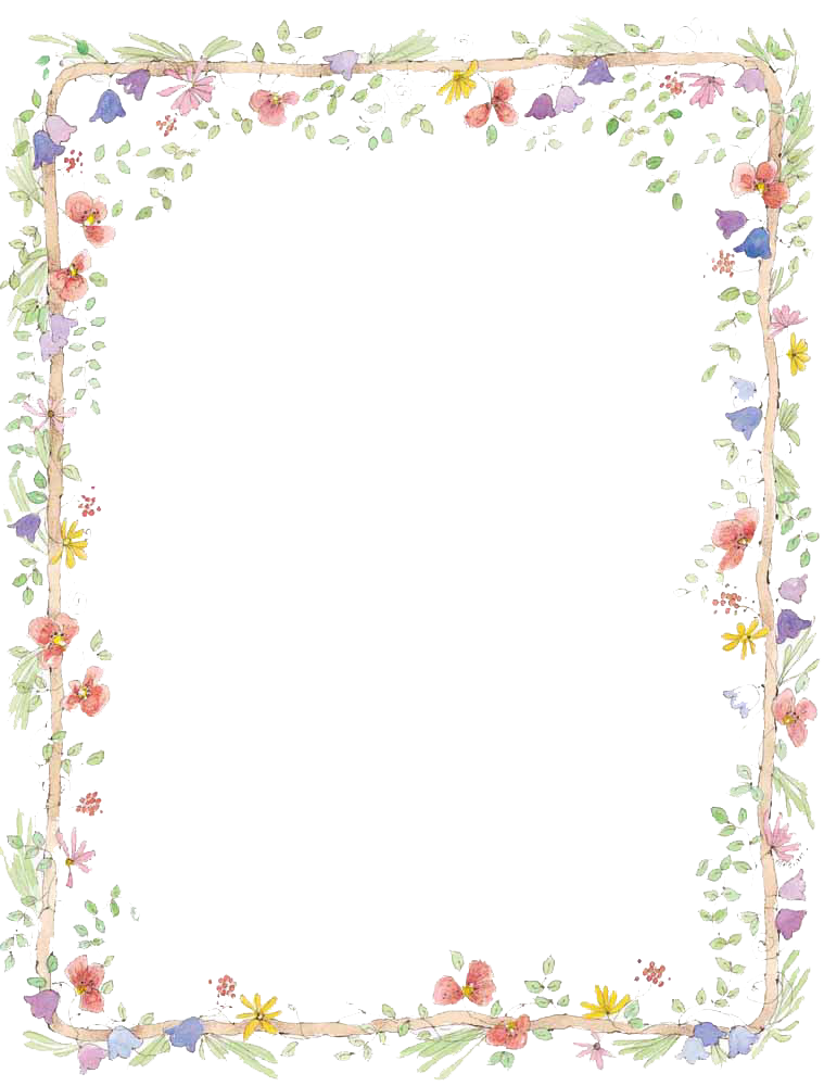 Flowers Borders PNG Transparent Images.