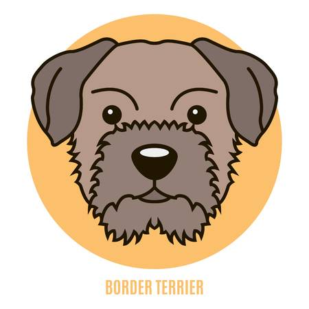 320 Border Terrier Stock Illustrations, Cliparts And Royalty Free.