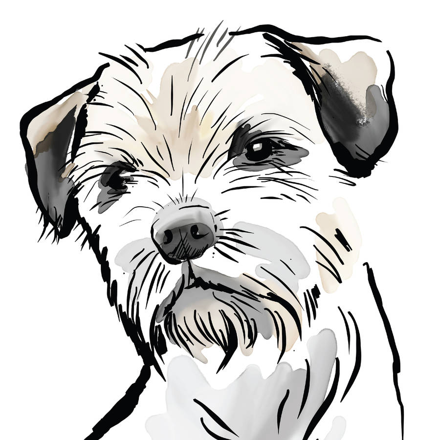 Border Terrier Print, Breed Traits Or Pers #271616.