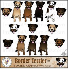 347 BORDER TERRIER * dog art print * Pen and ink drawing * Jan.