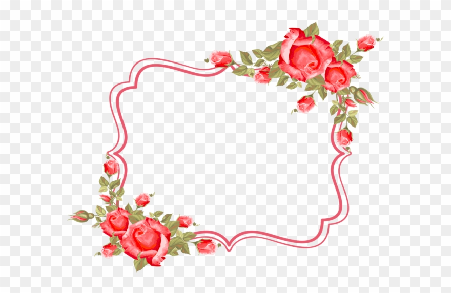 Frame, Flower, Roses, Frame, Border,rose, Wedding,.