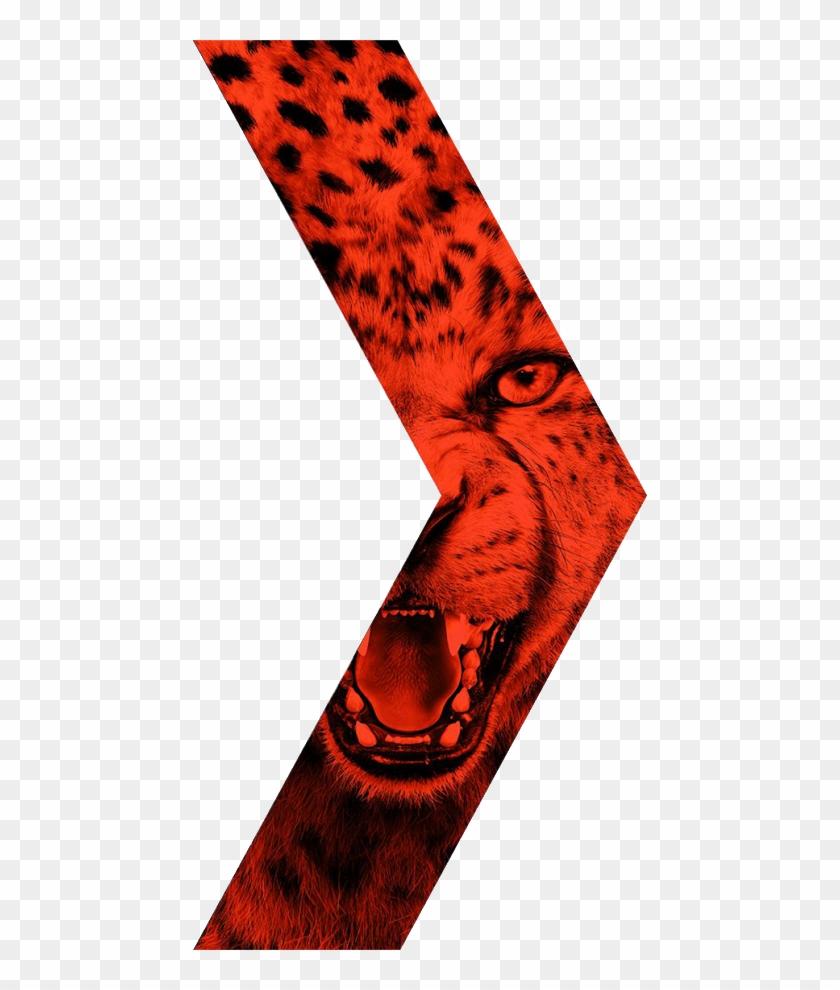 Mentahan Nike Born Mercurial, HD Png Download (#562818), Free.