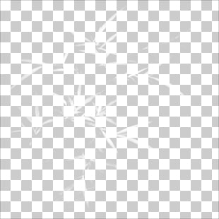 5 boroko PNG cliparts for free download.