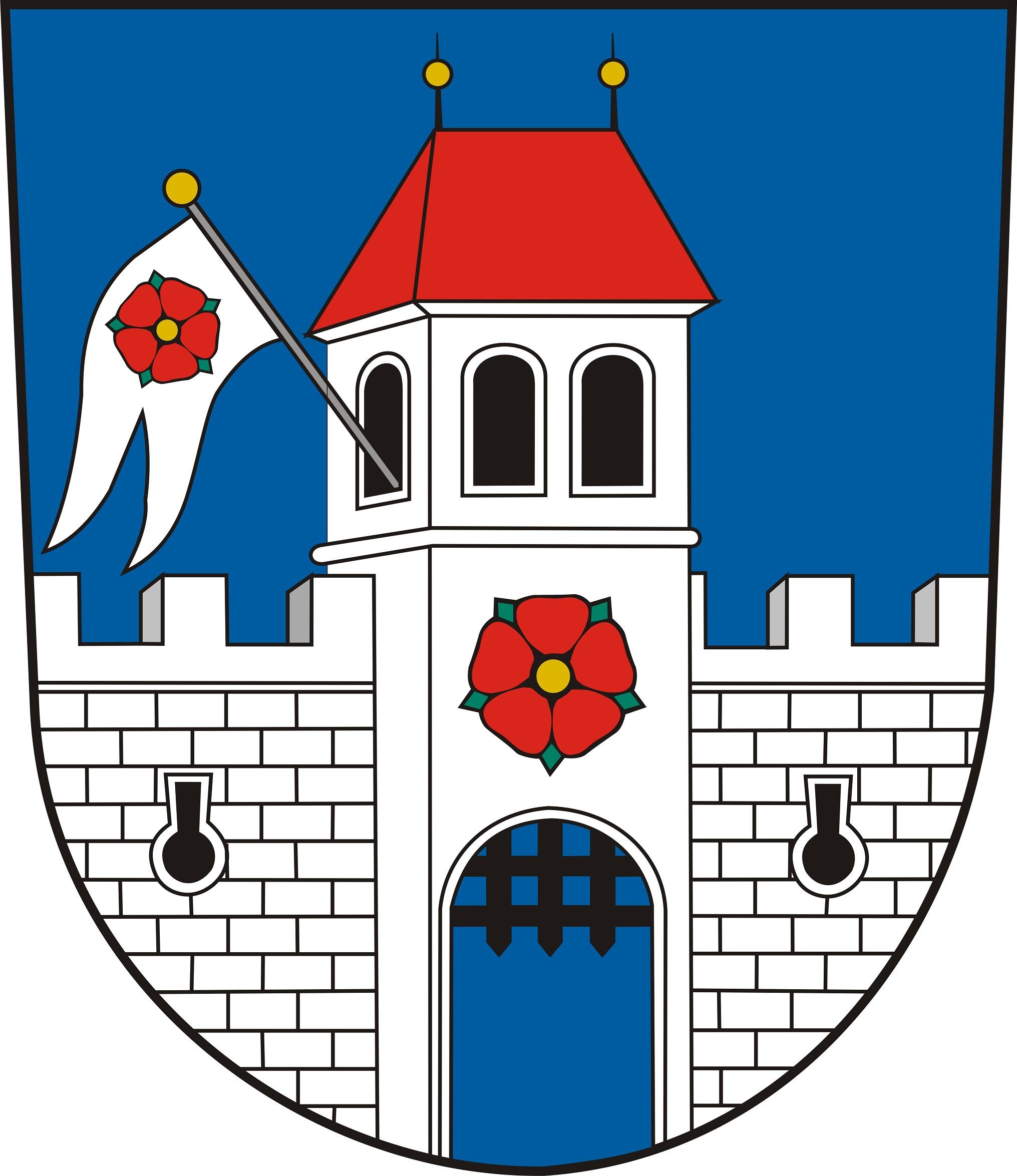 Ples města Borovany.