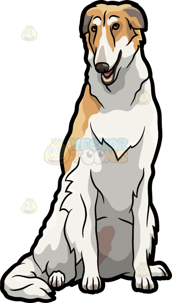 A Beautiful Borzoi Pet Dog Cartoon Clipart.