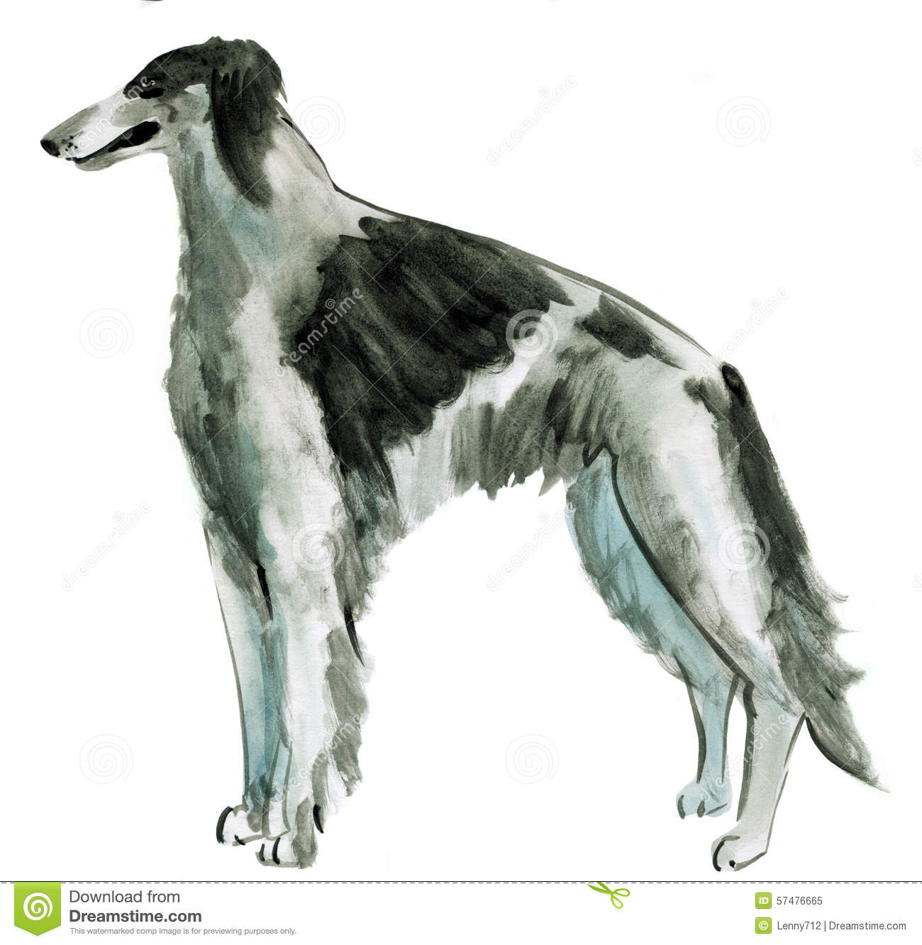 Borzoi In Watercolor Stock Illustration.