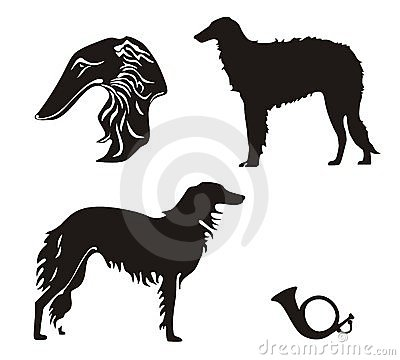 Russian wolfhound clipart.