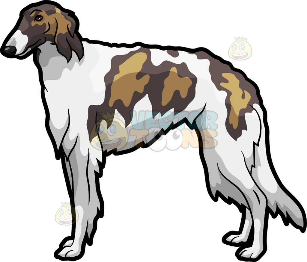 A Shaggy Borzoi Pet Dog Cartoon Clipart.