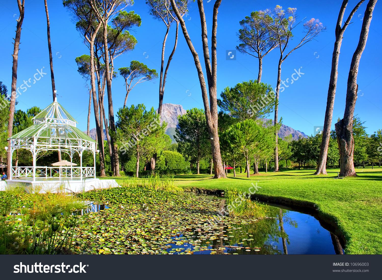 Pond In Park.