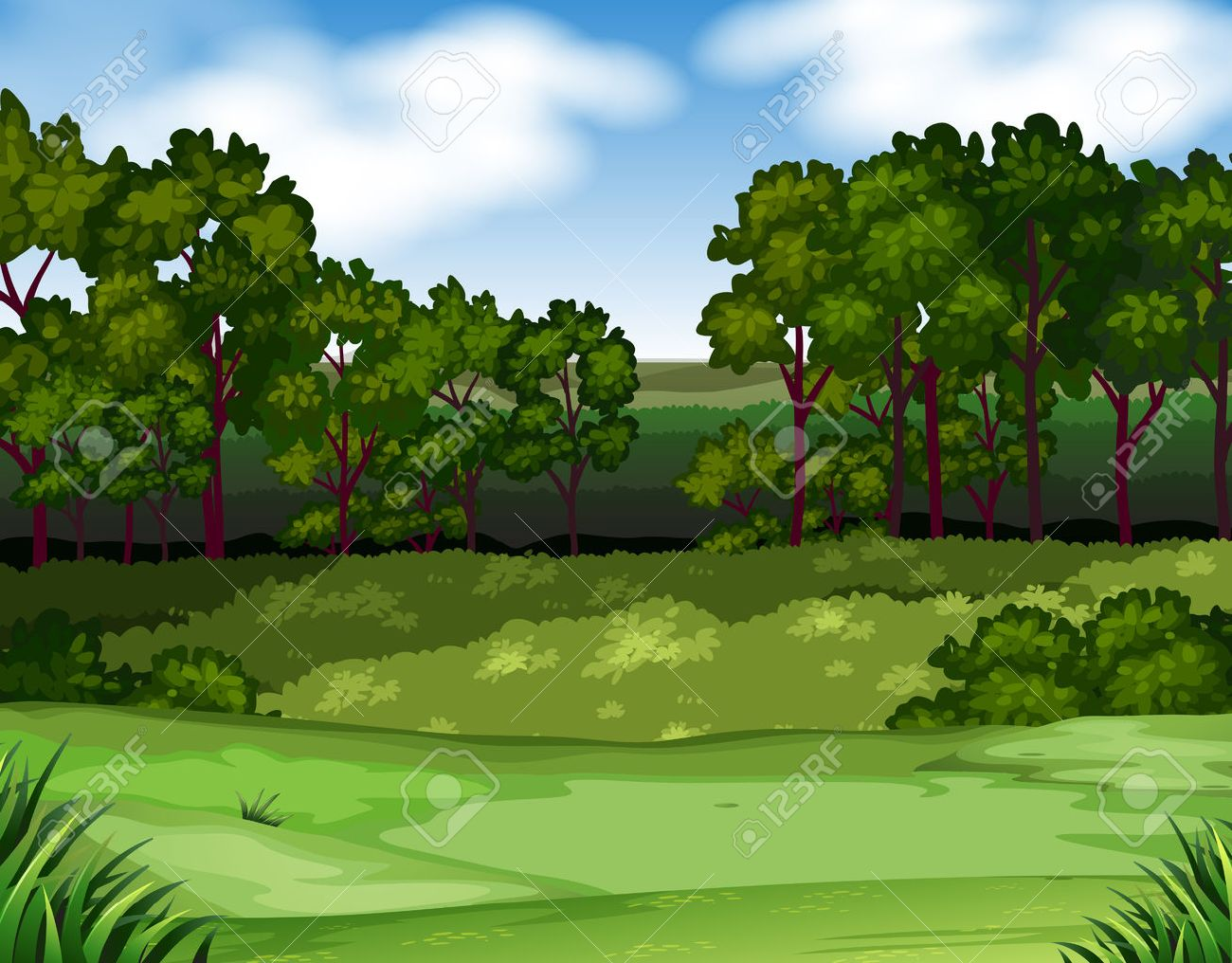 Escena del bosque con árboles y campo de la ilustración.