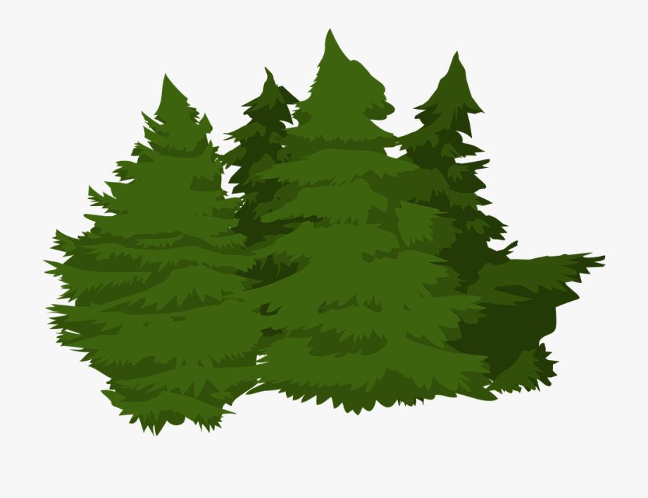 Vector Pine Trees 17, Buy Clip Art.