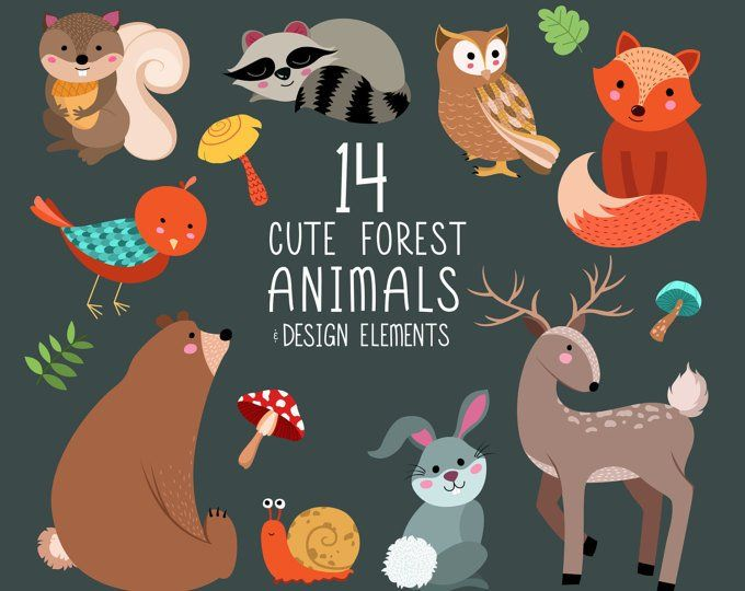 Animales del bosque bosque Clip Art.