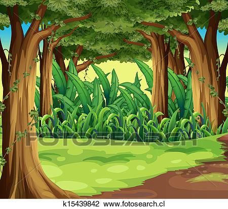 Gigante, árboles, en, el, bosque Clipart.