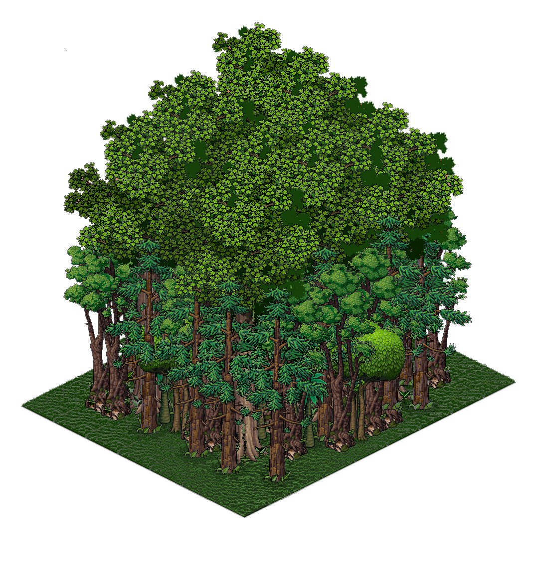 bosque (PNG).