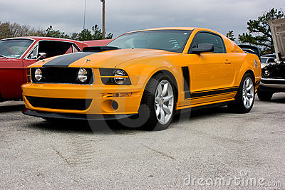 Mustang Boss 302 Royalty Free Stock Photos.
