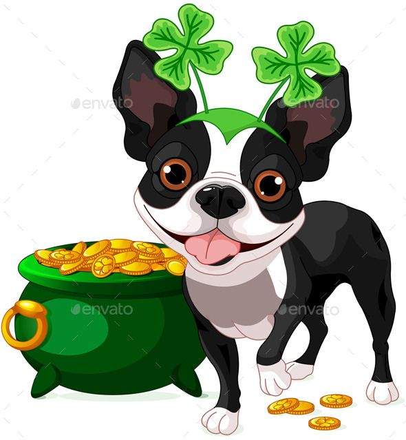 1000+ images about Boston Terriers on Pinterest.