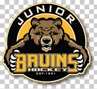 316 Boston Bruins PNG cliparts for free download.