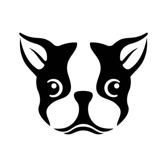 Boston Terrier Dog Head Graphics SVG Dxf EPS Png Cdr Ai Pdf Vector Art  Clipart instant download Digital Cut Print File Cricut Silhouette.
