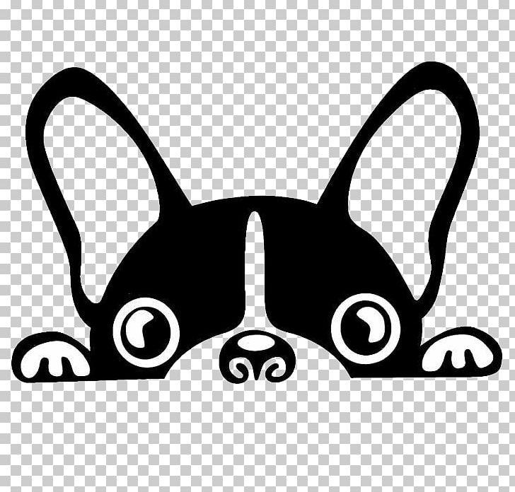 Boston Terrier French Bulldog Brazilian Terrier Puppy PNG, Clipart.