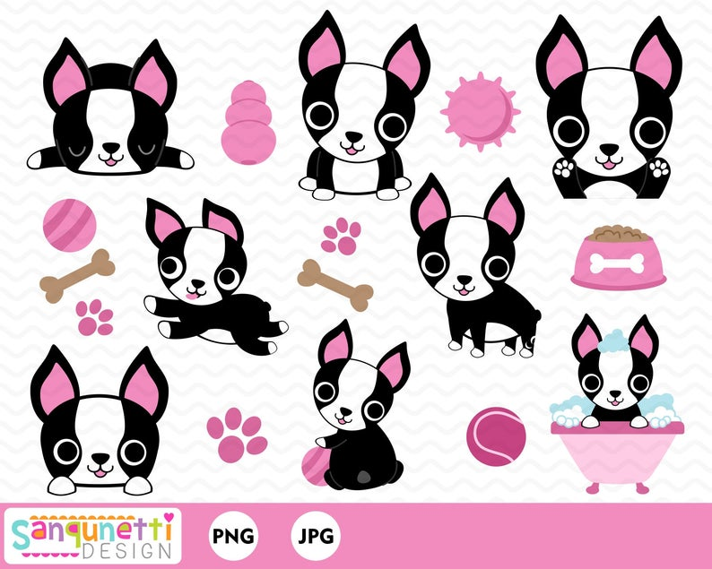 Boston Terrier clipart, pet dog clipart, digital art instant download.