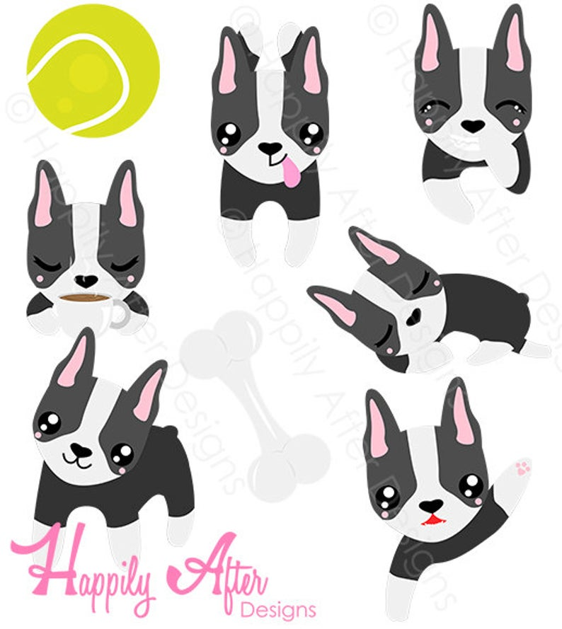 Boston Terrier Dog Clipart, dog clip art, Boston Terriers, dog breed  design, cute dog clipart, puppy clipart, digital clipart, commercial.