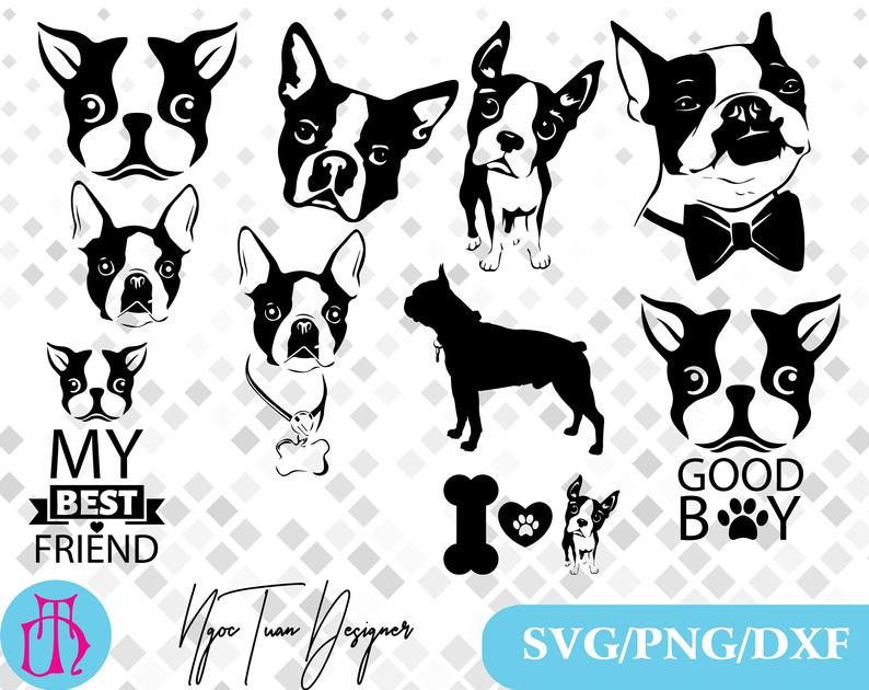 Boston terrier svg,png,dxf/Boston terrier clipart for  Design,Print,Silhouette,Cricut and any more.