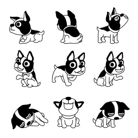 436 Boston Terrier Stock Illustrations, Cliparts And Royalty Free.