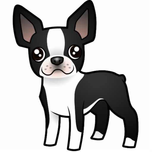 Boston Terrier Cartoon Clipart.