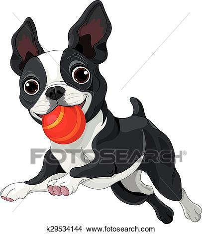 Boston Terrier Holds Ball Clipart.