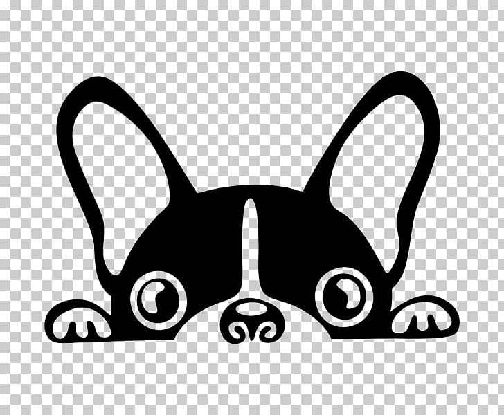 French Bulldog Boston Terrier Pit bull Puppy, puppy PNG.