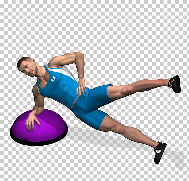 Physical fitness Leg raise BOSU Exercise Balls, Muscle legs.