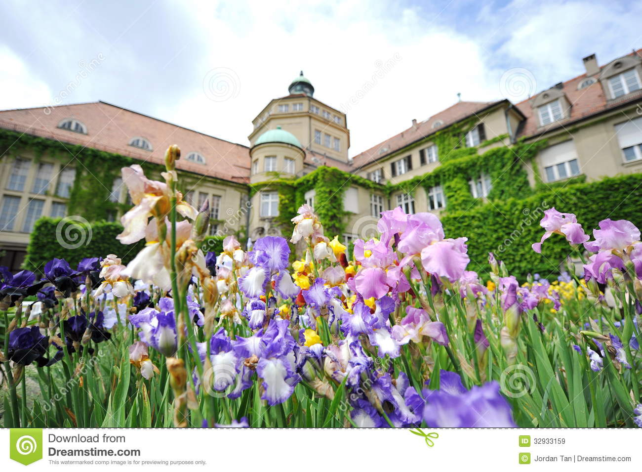 Colorful Flowers In Front Of Botanic Institute Of Munich Botanical.