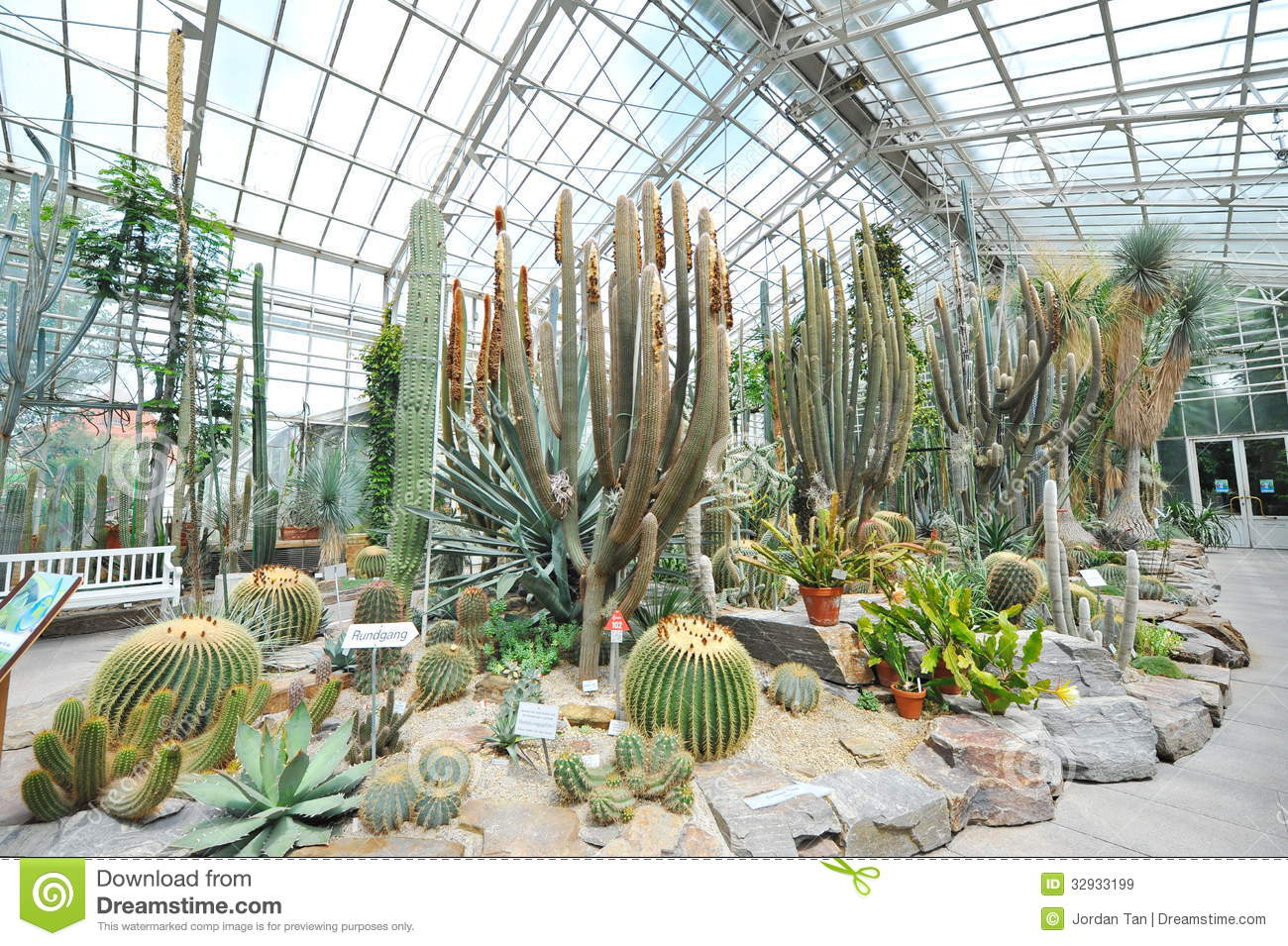 Munich, Botanical Garden Orchids Greenhouse Editorial Stock Image.
