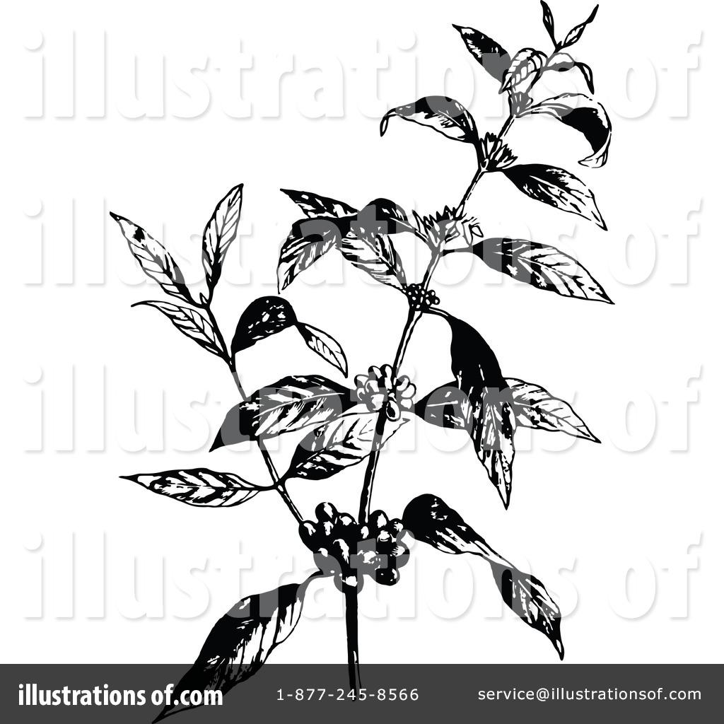 Botanical Clipart #1180298.