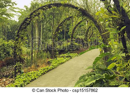 Stock Image of Singapore Botanical Garden.