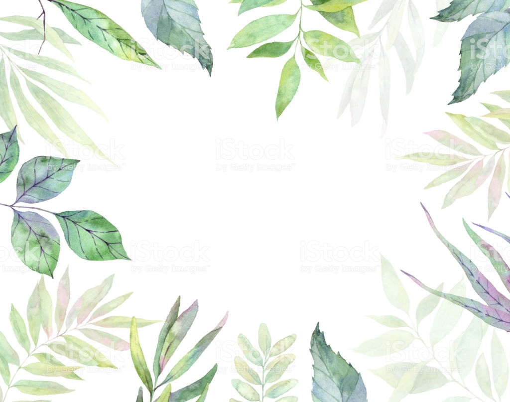 Hand Drawn Watercolor Illustration Botanical Clipart Frame With.