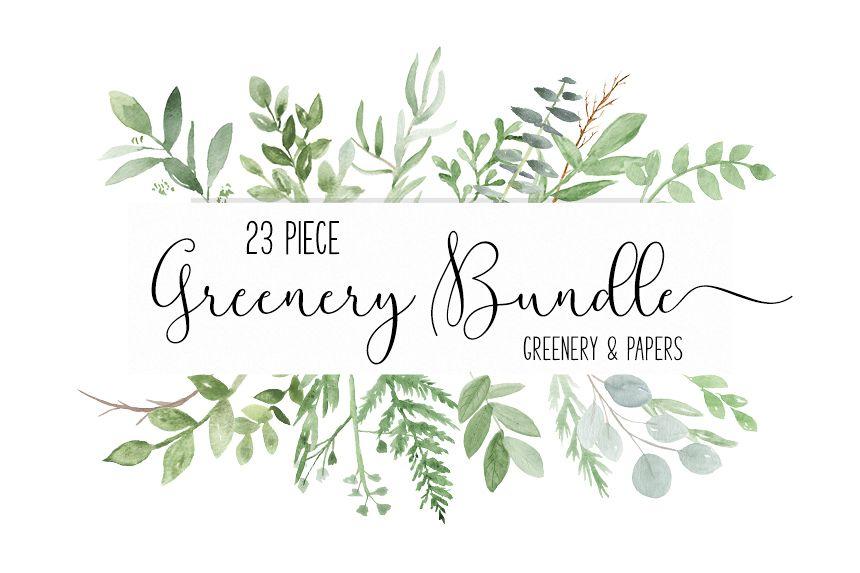 Watercolor Greenery Botanical clip art PNG Bundle.