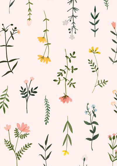 Botanical Clipart Wildflower Hand Drawn Floral Watercolor png.