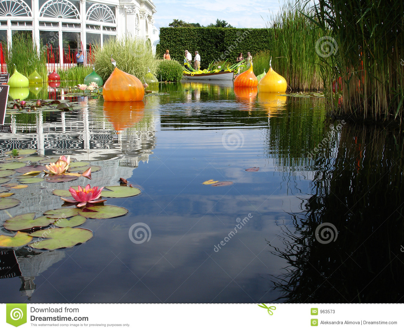 Waterlily Pond In Bronx BOtanical Garden Stock Photos.