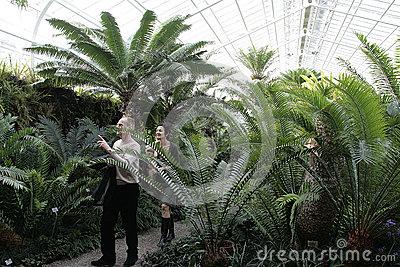 Munich Botanical Garden Stock Photo.
