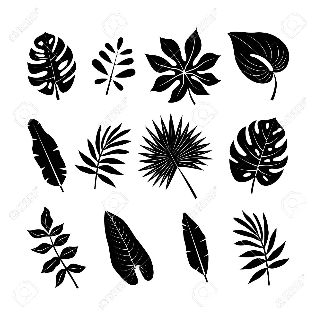 Tropical leaves silhouettes set. Jungle palm leaves collection.