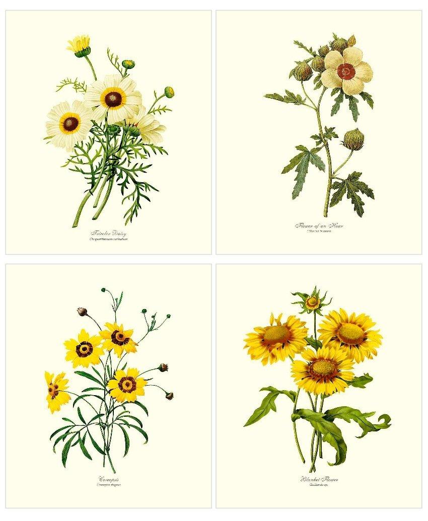 Yellow Flower Print Set.