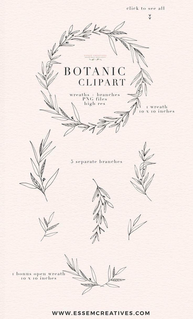 Botanical Clipart, Botanical Print Illustration, Greenery Eucalyptus.