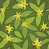 Botanique Clip Art.