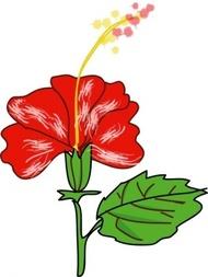 Botany Clip Art Download 128 clip arts (Page 1).
