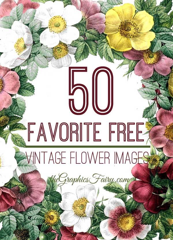 Free Botanical Flower Clip Art.