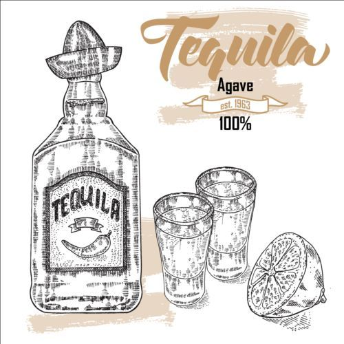 Tequila with Bottle and glasses hand drawn vector 02.